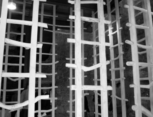 """O zi cu Iacov… despre """"scări"""""""
